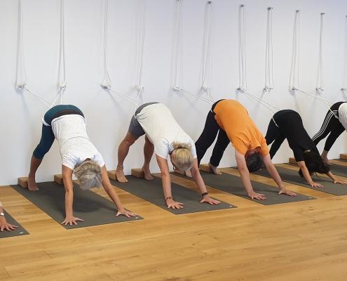 """""""Herabschauender Hund"""" in den Wandseilen (adho mukha svanasana) – Yoga-Übung im Studio für Iyengar Yoga und Meditation, Neustadt"""