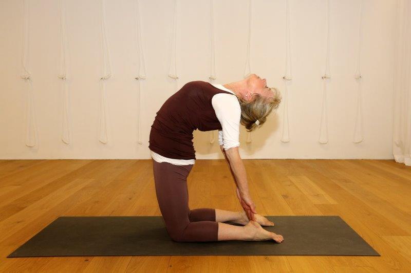 """""""Kamel"""" – Yoga-Übung im Studio für Iyengar Yoga und Meditation, Neustadt"""