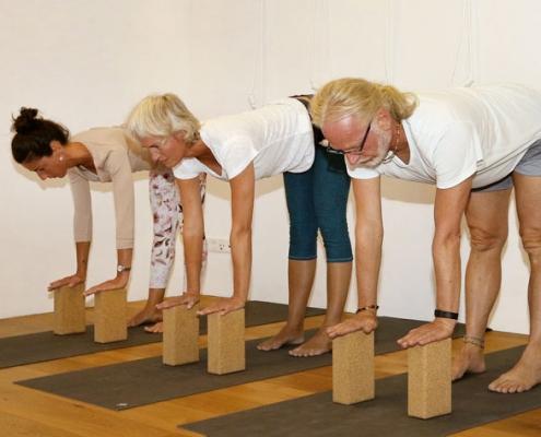 Uttanasana, Studio für Iyengar Yoga und Meditation, Neustadt