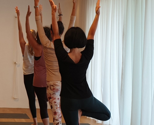 Yoga-Workshop Standhaltungen im Studio für Iyengar Yoga und Meditation, Neustadt